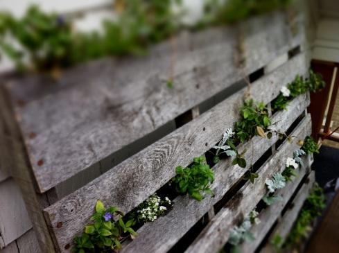 vertical pallet garden, deck planter, pallet planter