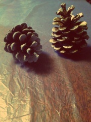 Spray-painted white & gold pinecones, DIY, Christmas tree, Pinterest