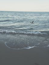 Evening walks along the beach. South Beach, Miami.