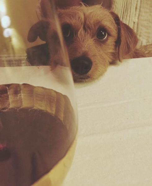 Bennington, the wine connoisseur.